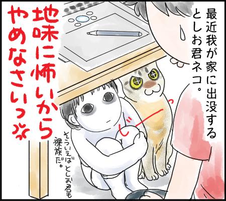 としお君ネコ4