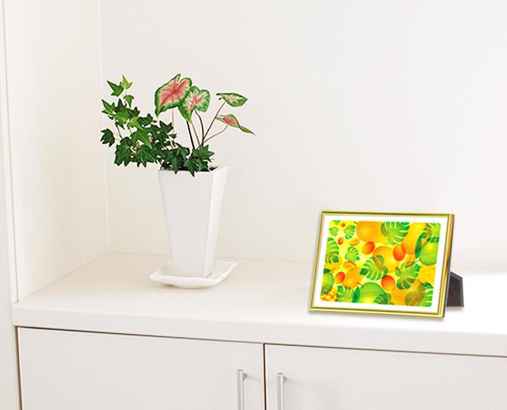 風水果実アートプレミアムエントランスイメージ