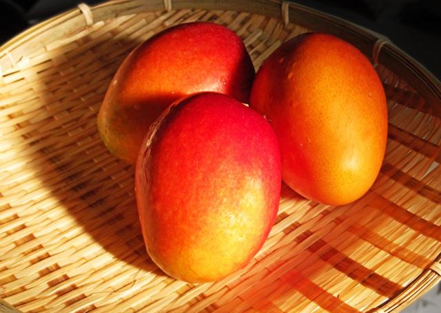 赤いマンゴーイメージ