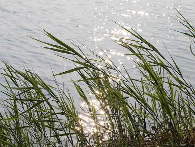 風と水のイメージ