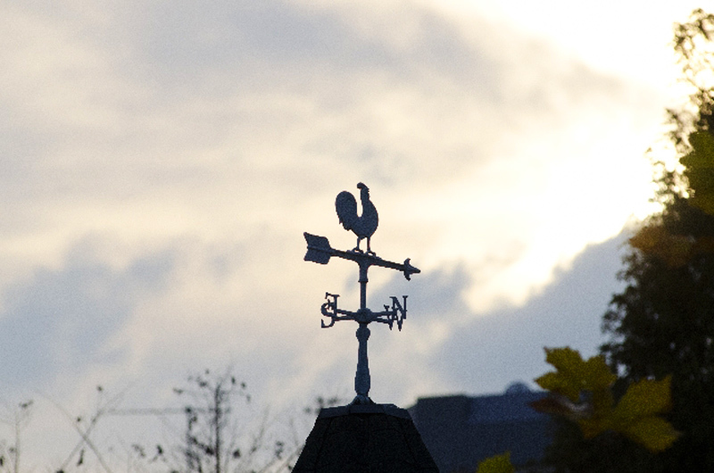 風見鶏メインイメージ