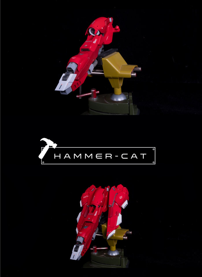 G503_G504_hammer_cat_nightingale_023.jpg