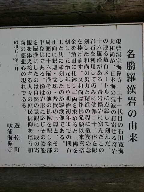 DSC_1029 (480x640)