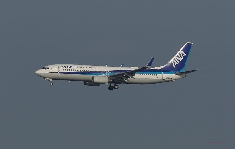 E-773.jpg