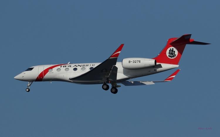 E-873.jpg