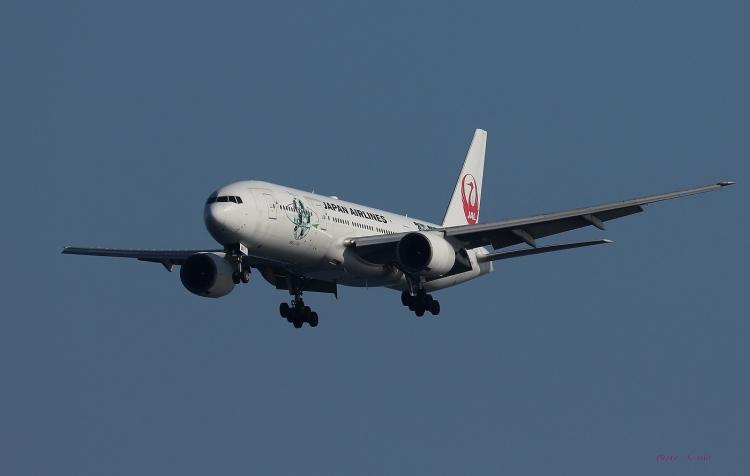 E-876.jpg