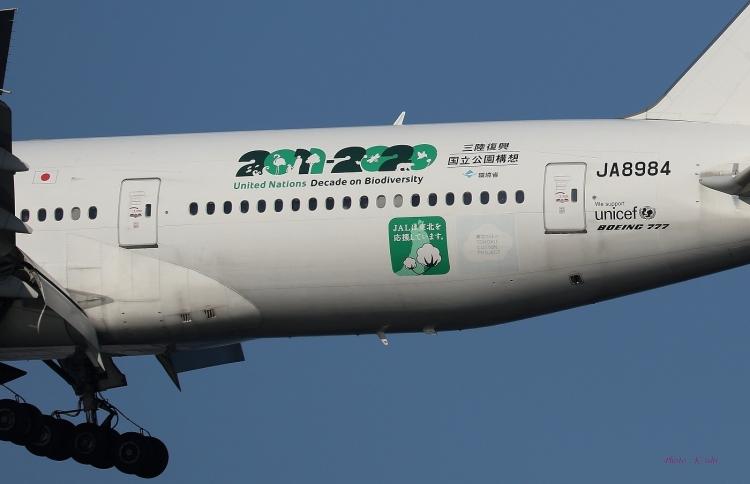 E-879.jpg