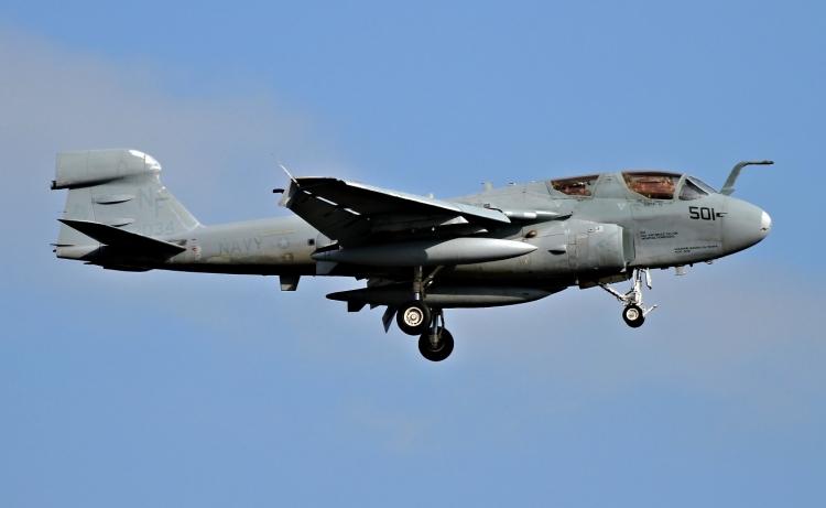 F-1029.jpg