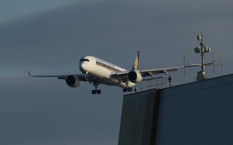 F-1103.jpg