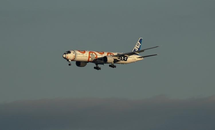 F-1119.jpg