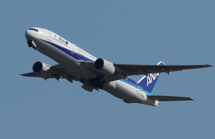 F-1164.jpg