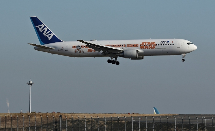F-1262.jpg