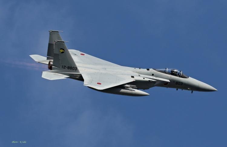F-295.jpg