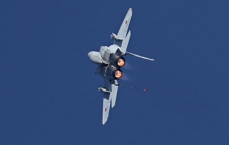 F-493.jpg