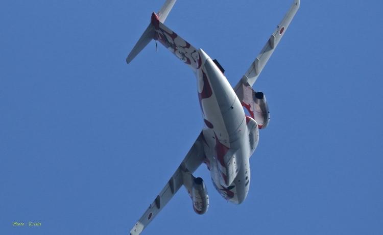 F-73.jpg
