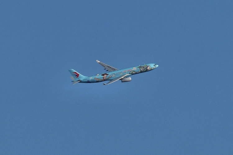F-969.jpg