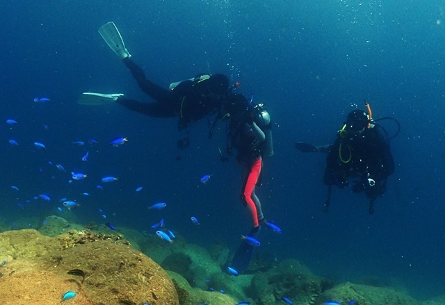 Diver20190817web.jpg