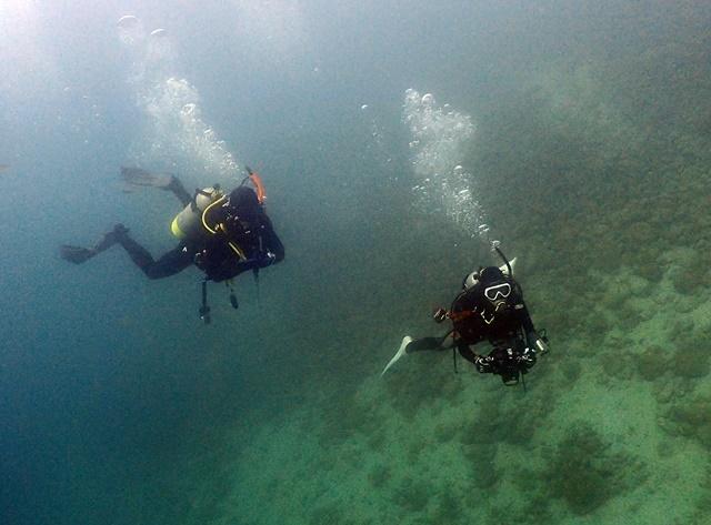 Diver20190818web.jpg