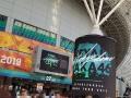 欅坂46東京ドームlive