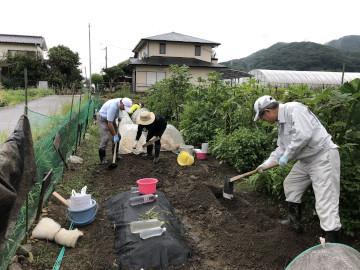 雨の後の苗植え作業