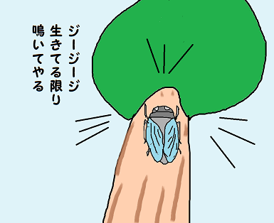 川柳 元年 8月 夏  はつお