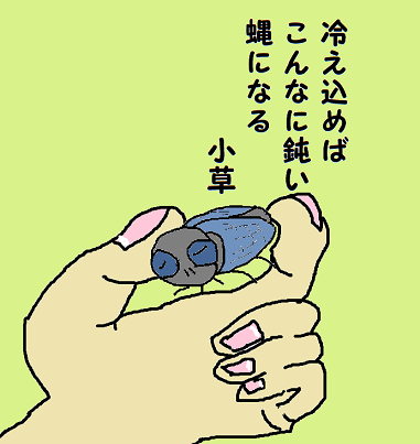 川柳 元年11月 雑詠 蠅 小草