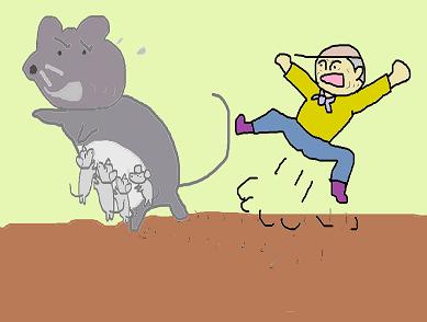 ネズミの子連れ