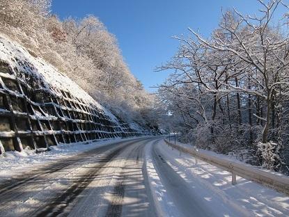 雪の朝5y