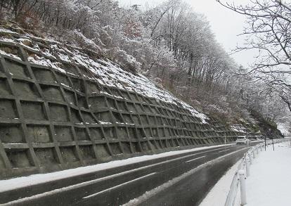 3月3日雪化粧
