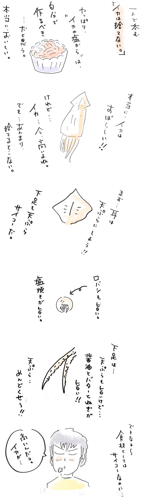 IMG-2146.jpg