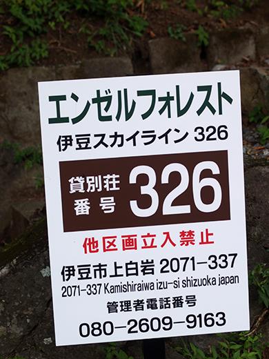 P1011813.jpg