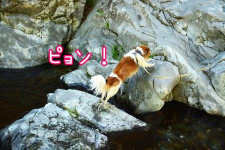 190508_tenkawa3.jpg