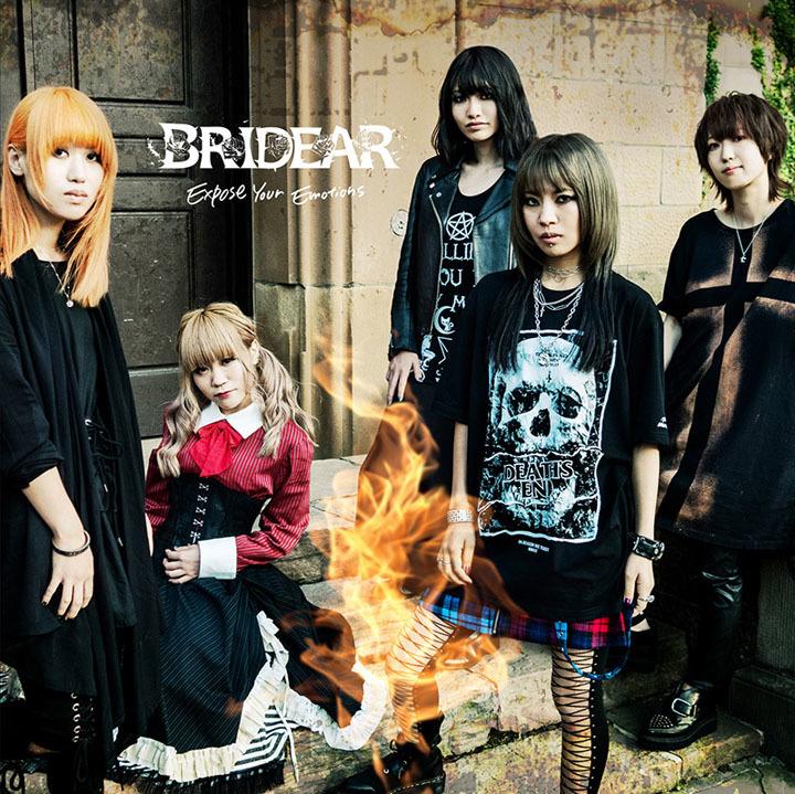 bridear6.jpg