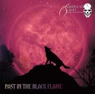 manipulated_slaves-past_in_the_black_flame.jpg