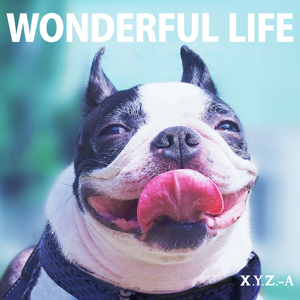 xyz_a-wonderful_life2.jpg