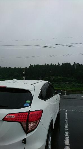 南関町0298