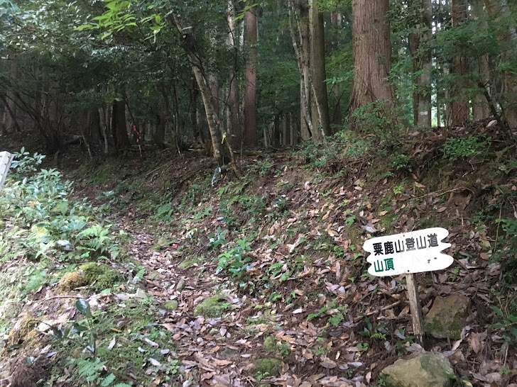 2019粟鹿山/登山道入り口