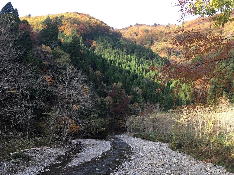 2019ブナノキ峠/川