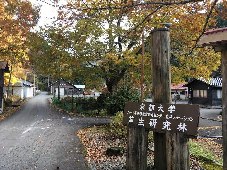 2019ブナノキ峠/京大研究林事務所