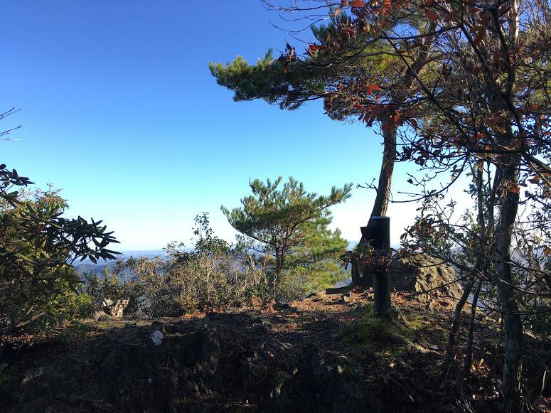 2019鋸山/山頂の様子