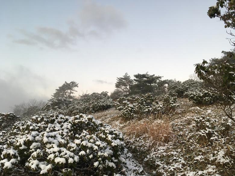 2019千町ヶ峰/雪
