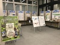 生物多様性パネル展