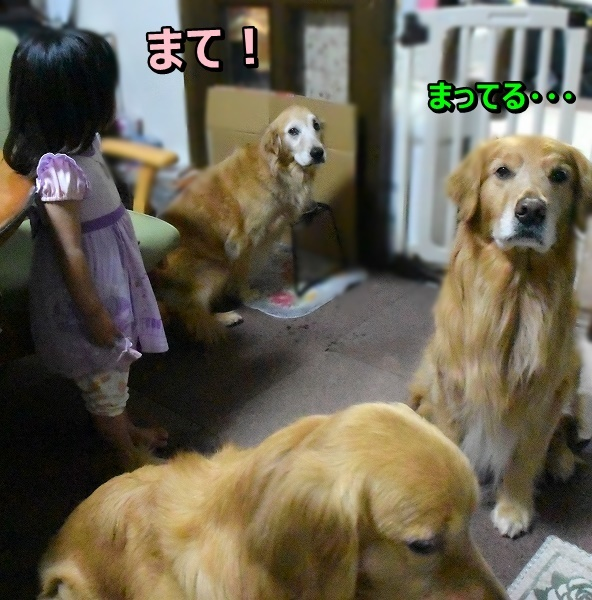 DSC_6681マテ