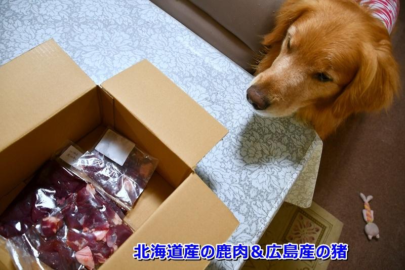 DSC_6963北海道産の鹿肉 広島産の猪