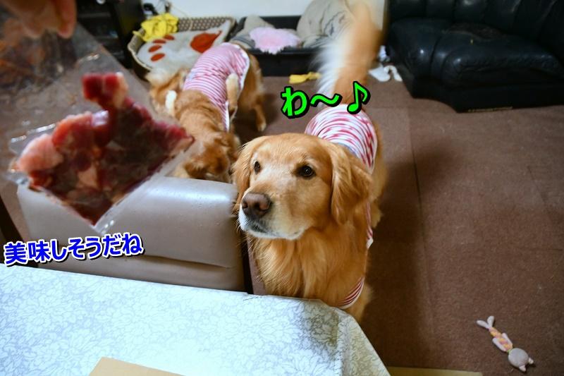 DSC_6965ほ~7