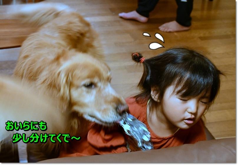 DSC_7483ダメ~
