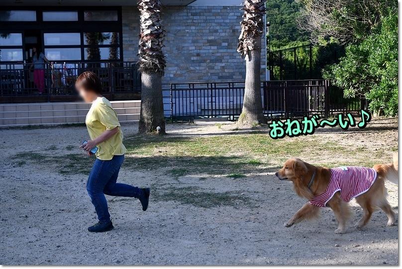 DSC_6941おねが~い