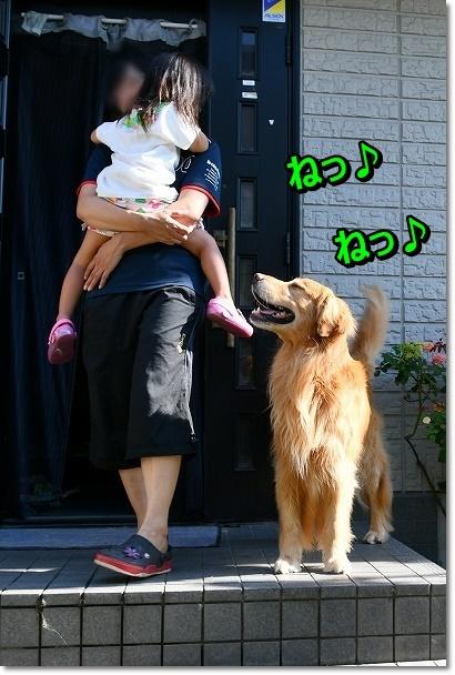 DSC_8121遊ぼうじぇ