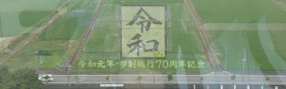 1-2 令和 田んぼアート - コピー.JPG