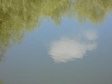 2-1さきたま古墳公園 秋の雲
